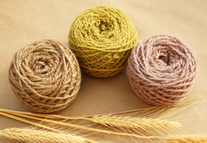 Prairie Yarn Colorway - 2ply Hand-dyed Yarn