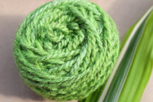 Load image into Gallery viewer, Spring Growth Yarn Colorway - 2ply Hand-dyed Yarn