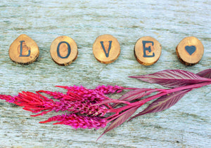 Wooden LOVE Magnet Set