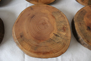 FINISHED Spalted Ash Wood Slices