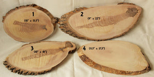 UNFINISHED Live Edge Ash Wood Slices