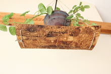 Load image into Gallery viewer, Live Edge Ash Plant Swing