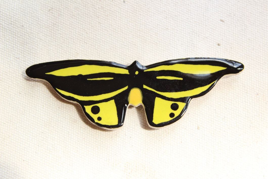 Birdwing Butterfly Magnet - Neon Yellow + Black Butterfly Magnet