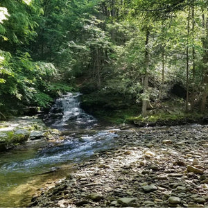 Backpacking the Old Loggers Path-Appalachian Outfitters