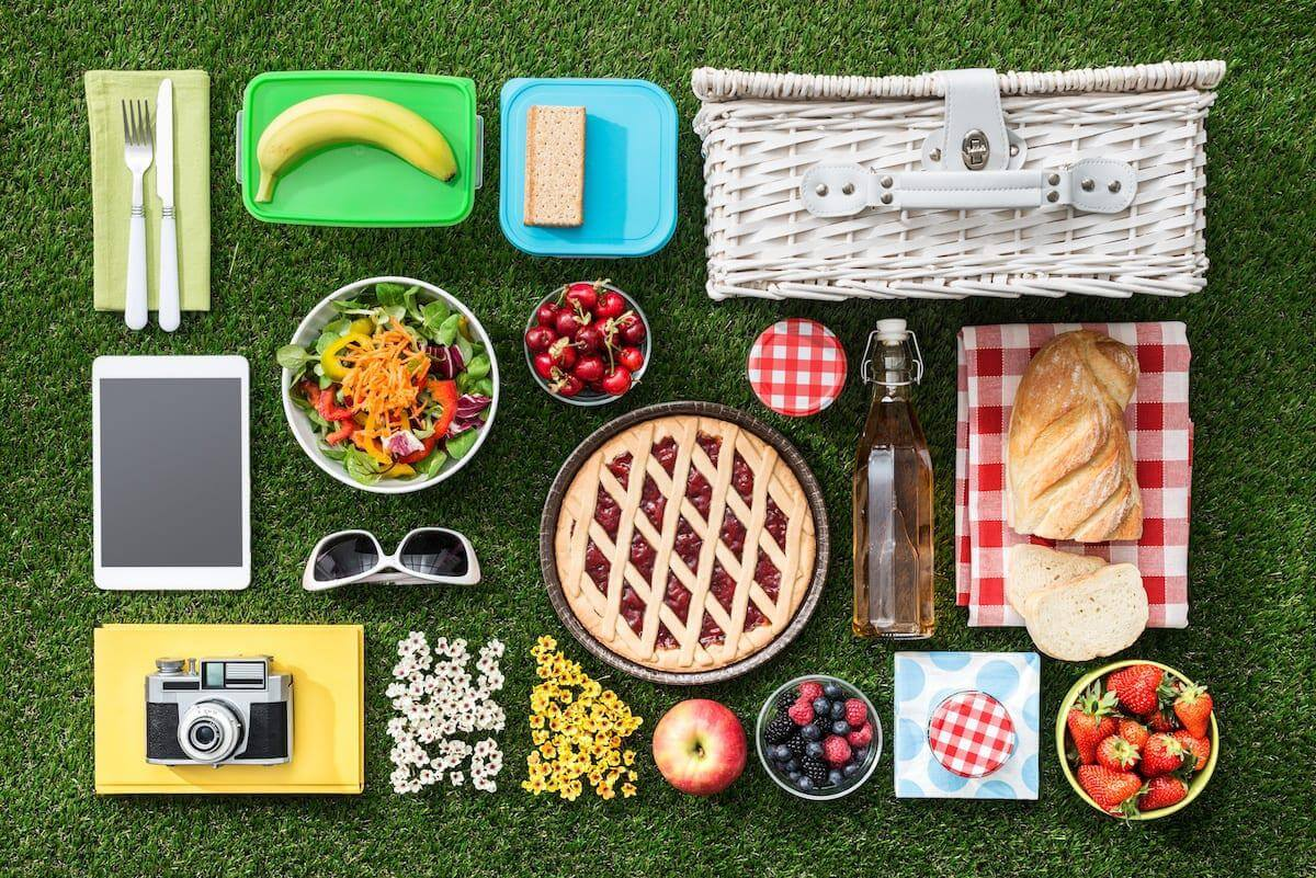 Organized gear and picnic supplies for an outdoor picnic