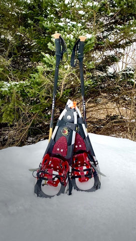 Crescent Moon Snowshoes in the Snow