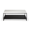 Anders Rectangular Marble Coffee Table