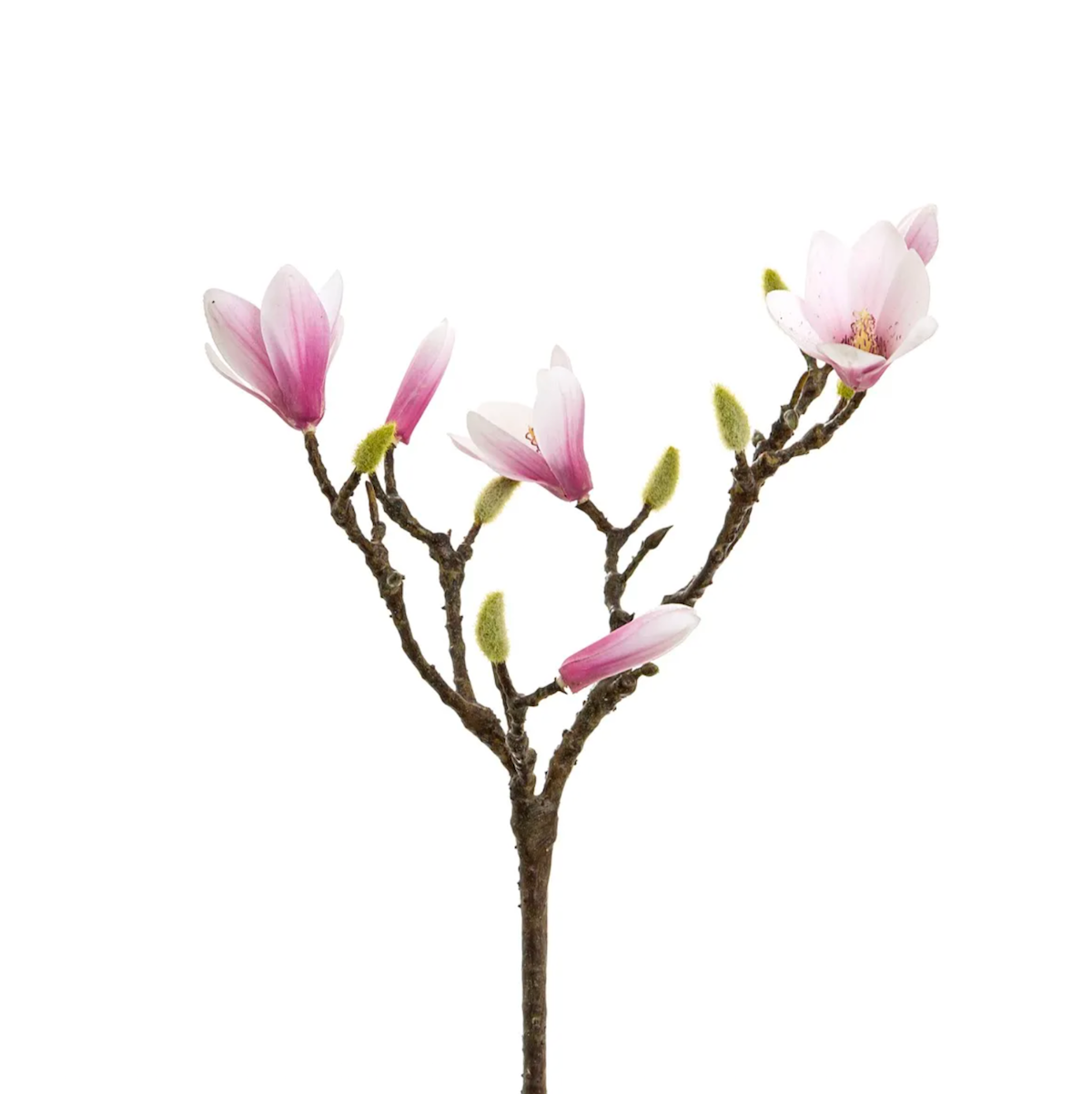 Artificial Short Magnolia Branch