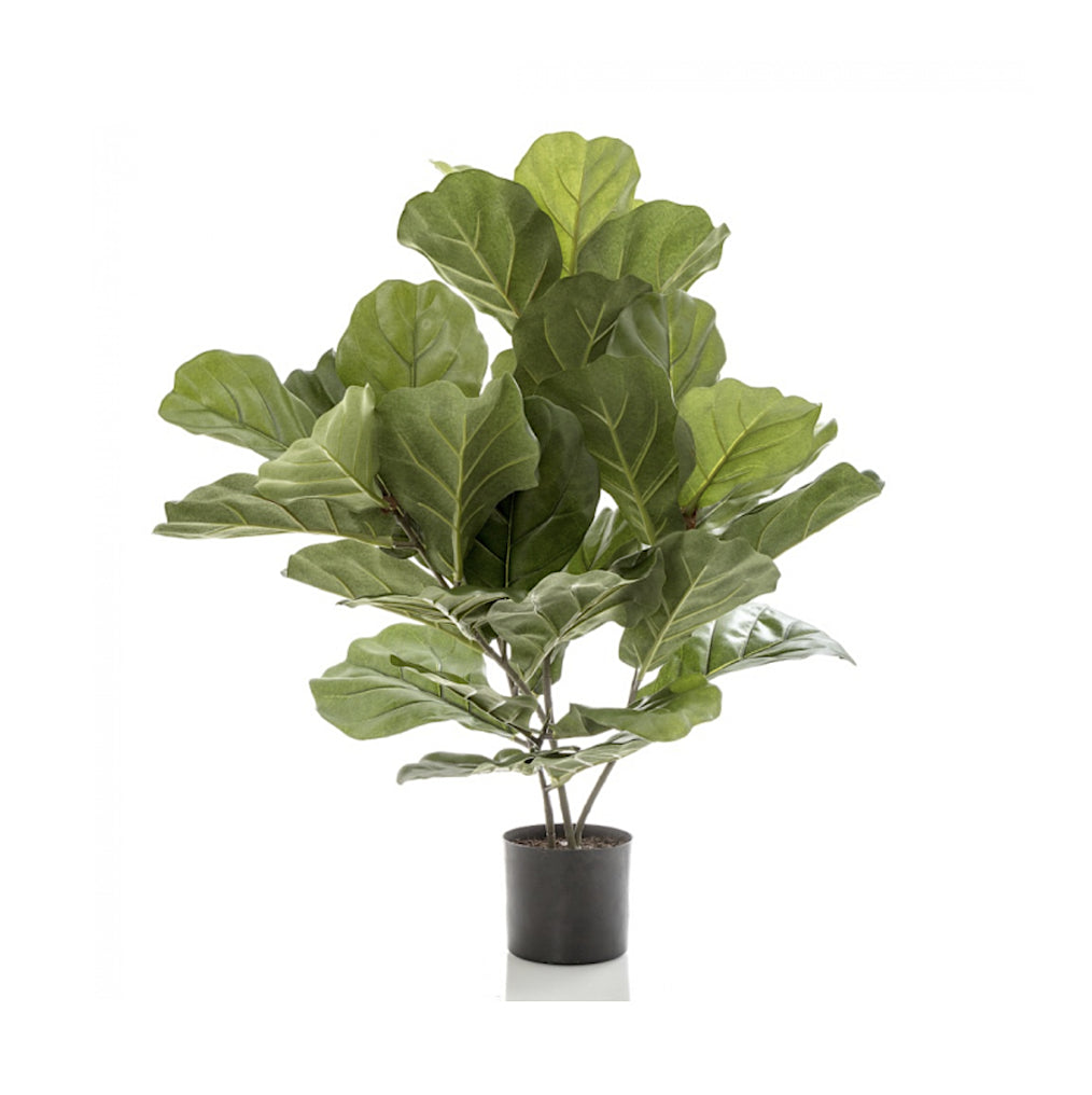 Artificial Fiddle Leaf Plant
