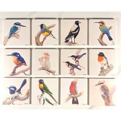 Birds of Australia Coaster | Eastern Spinebill