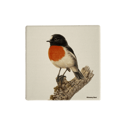 Birds of Australia Coaster | Scarlet Robin