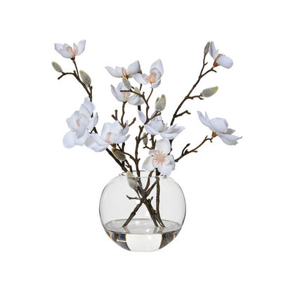 Magnolia Flowers in Vase | Medium
