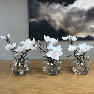 Magnolia Flowers in Vase | Small