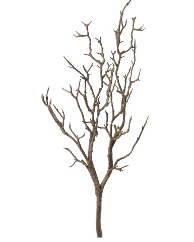 Artificial Branch