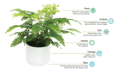 Okidome Suction Wall Planter