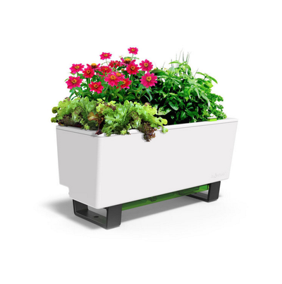 Glowpear Mini Bench Planter