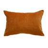 Sovereign Nutmeg Velvet Cushion