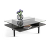 Terrace 1152 Rectangle Coffee Table