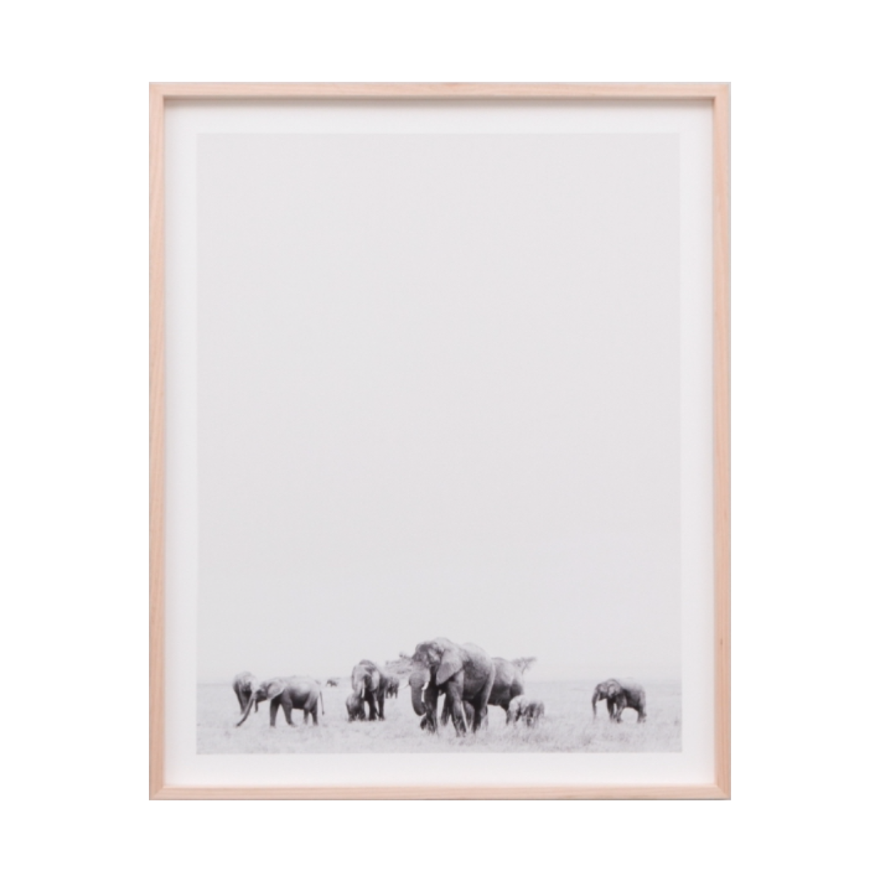 Travelling Herd Photographic Print | Black and white