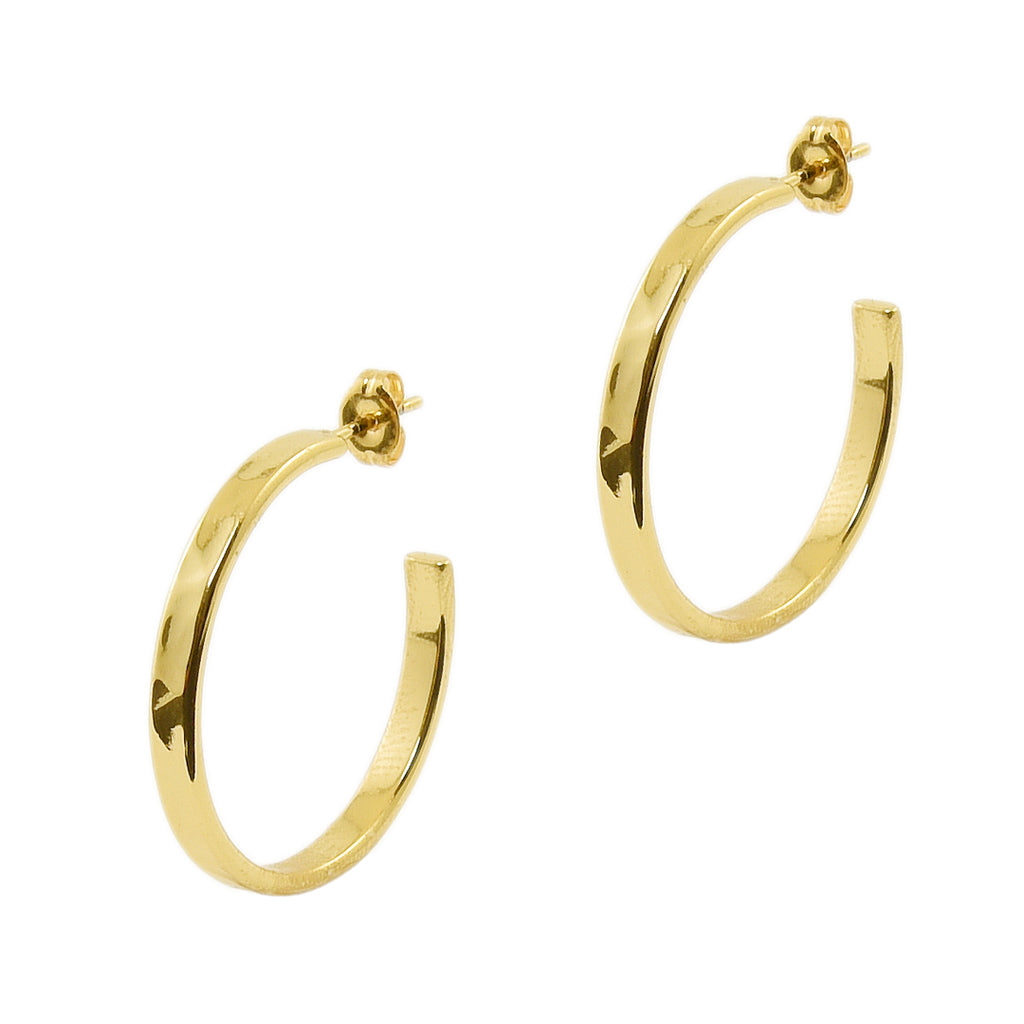 Gold Hammered Small Hoops