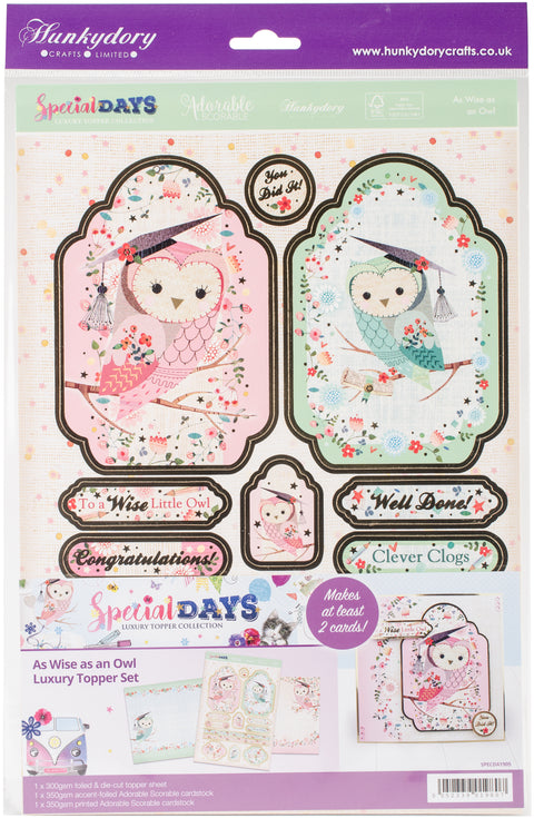 Hunkydory Special Days A4 Topper Set-As Wise As An Owl
