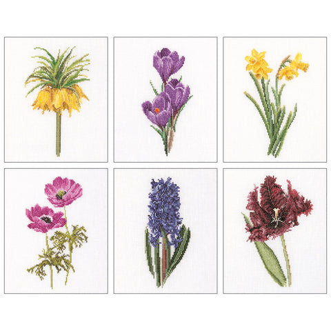 "Thea Gouverneur Counted Cross Stitch Kit 6.75""X8"" 6/Pkg-Floral Studies 3 On Aida"