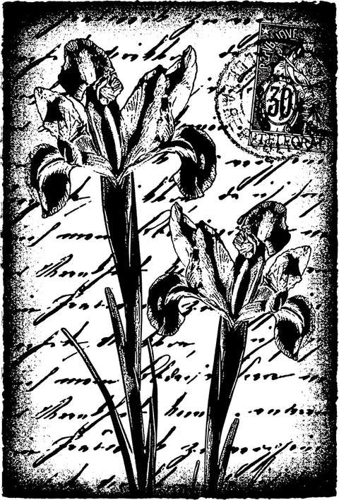 "Darkroom Door Cling Stamp 4.5""X3""-Inky Irises"