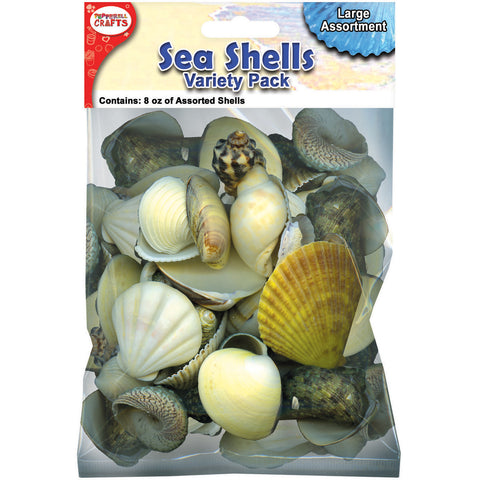 Mixed Sea Shells 8oz-Large