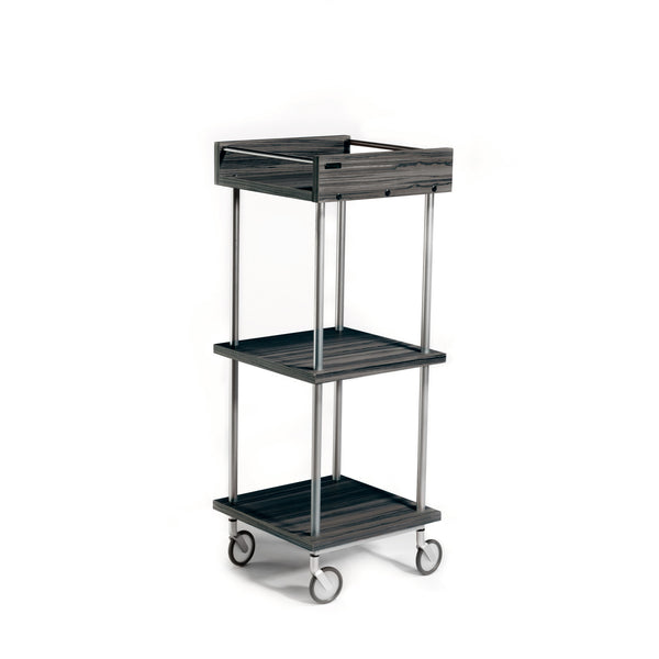 Up Start goes mobile with Transport, a versatile trolley for use at your stylist station or color bar. It features laminate clad wood shelf construction attached to a welded steel frame in a silver powder coat finish. Three shelves with stainless retaining rods on top shelf provide storage and working space.
