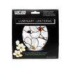 Louis C. Tiffany Magnolia Window Luminaries - Modgy