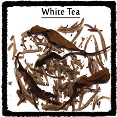 Types of White Tea leaves