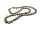 Beautiful Yangtze Pearl Strand