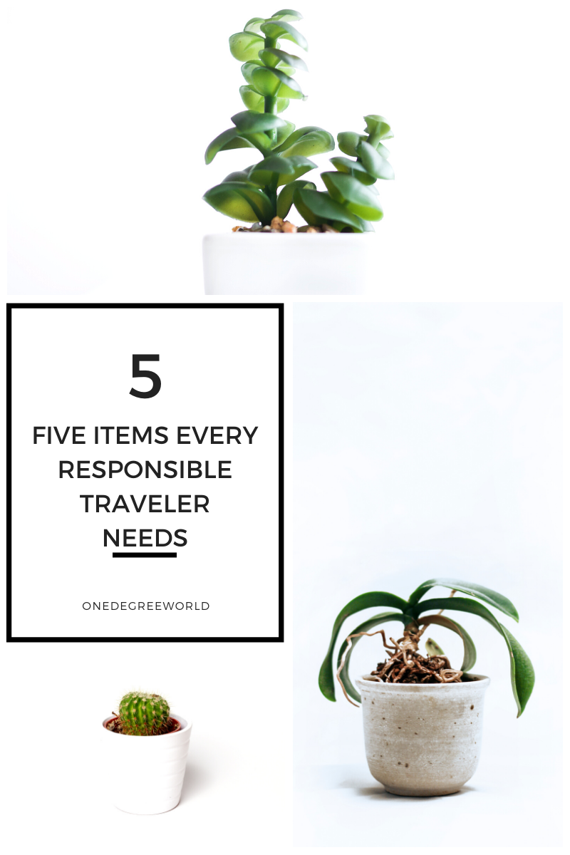 The Five Eco-Friendly Products Every Responsible Traveler Needs