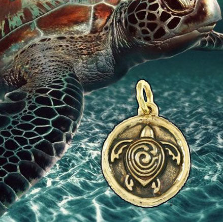 Sea Turtle Conservancy Collection