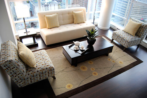 Jardin area rug in modern room