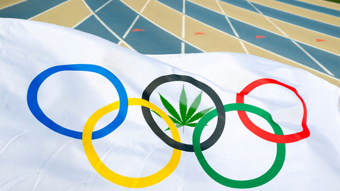 Hemp being used for construction in 2022 Olympics (Beijing)