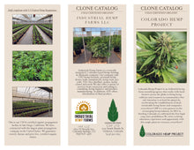 Load image into Gallery viewer, USDA Certified Organic Hemp Clones