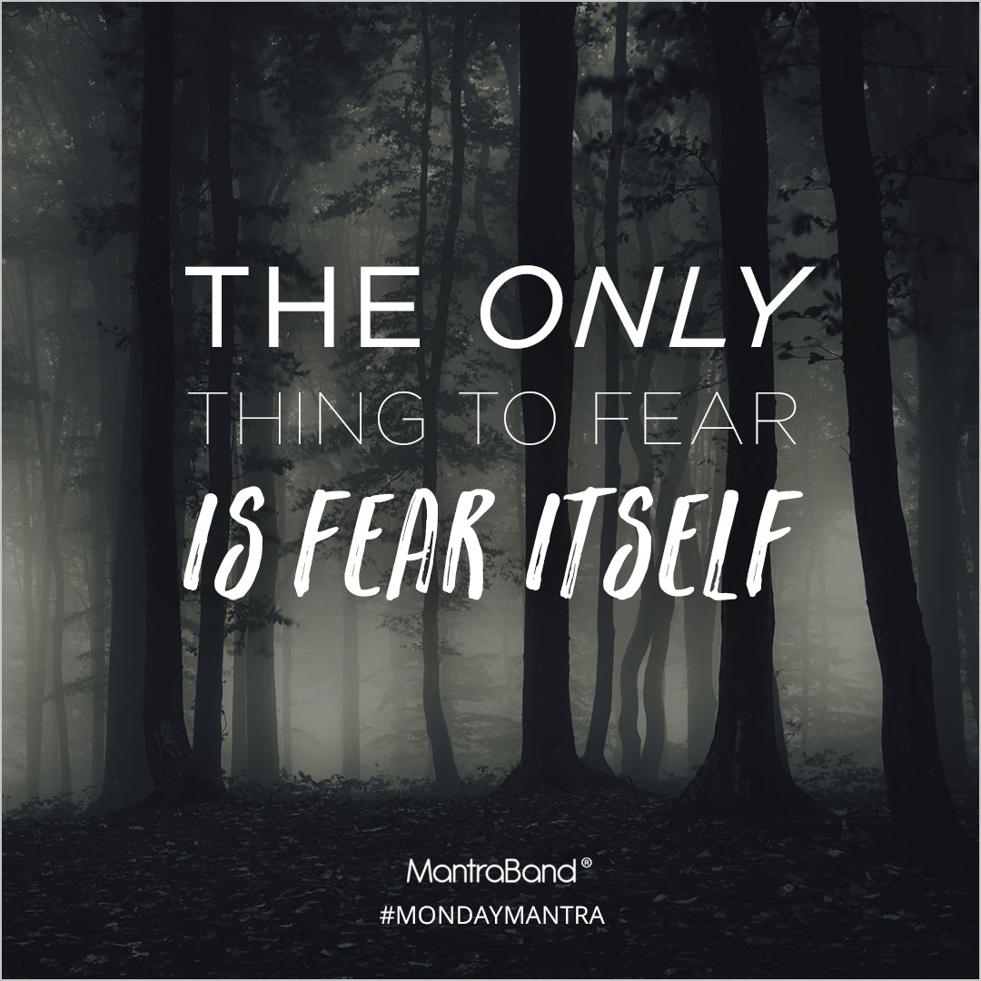 the only thing to fear is fear itself