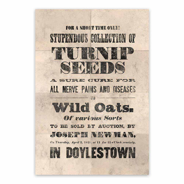 Vintage Mashups Print: Stupendous Collection of Turnip Seeds – full bleed