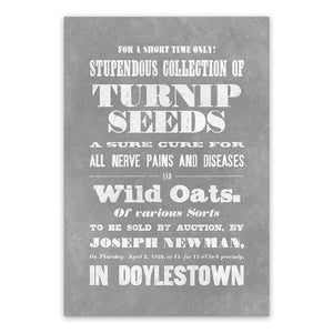 Vintage Mashups Print: Stupendous Collection of Turnip Seeds – slate, full bleed