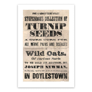 Vintage Mashups Print: Stupendous Collection of Turnip Seeds – on white