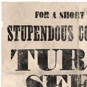 Vintage Mashups Print: Stupendous Collection of Turnip Seeds – detail 3