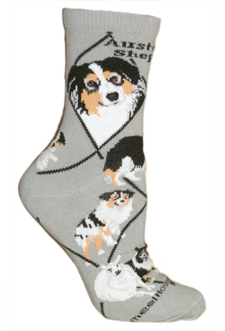 Australian Shepherd Crew Socks on Gray