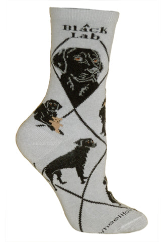Black Labrador Retriever on Gray Crew Socks