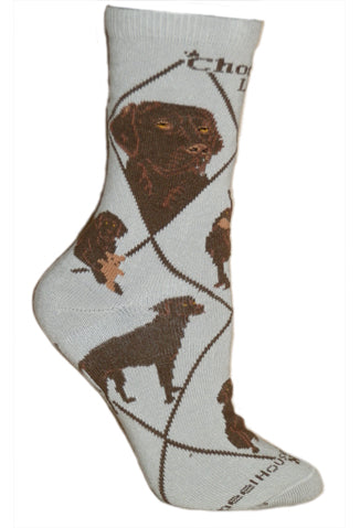 Chocolate Labrador Retriever on Gray Crew Socks
