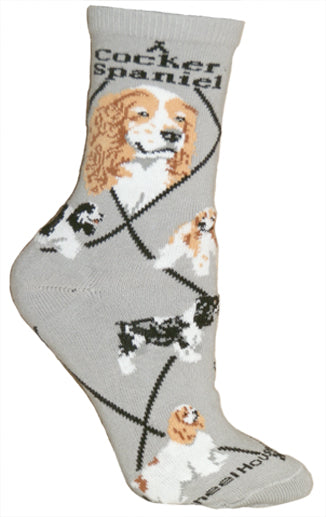 Cocker Spaniel, Parti-Colored Crew Socks on Gray