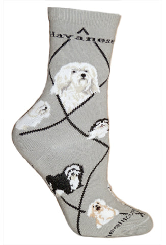 Havanese Crew Socks on Gray