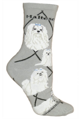 Maltese Crew Socks on Gray