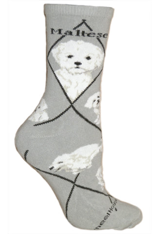 Maltese With Puppy Cut Crew Socks on Gray