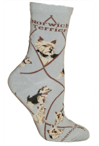 Norwich Terrier Crew Socks on Gray